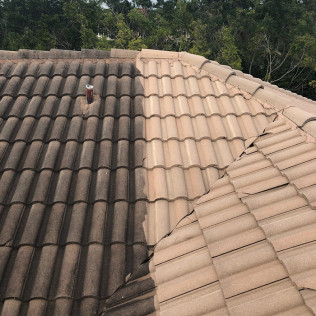 Non-Pressure Roof Cleaning